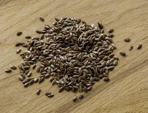 Olio di lino: un concentrato di benessere